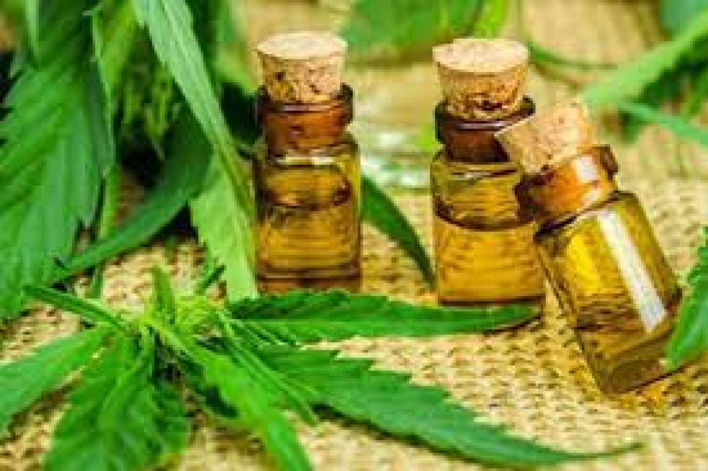 Cannabis medicinal en Jujuy: Donde existe una necesidad nace un negocio
