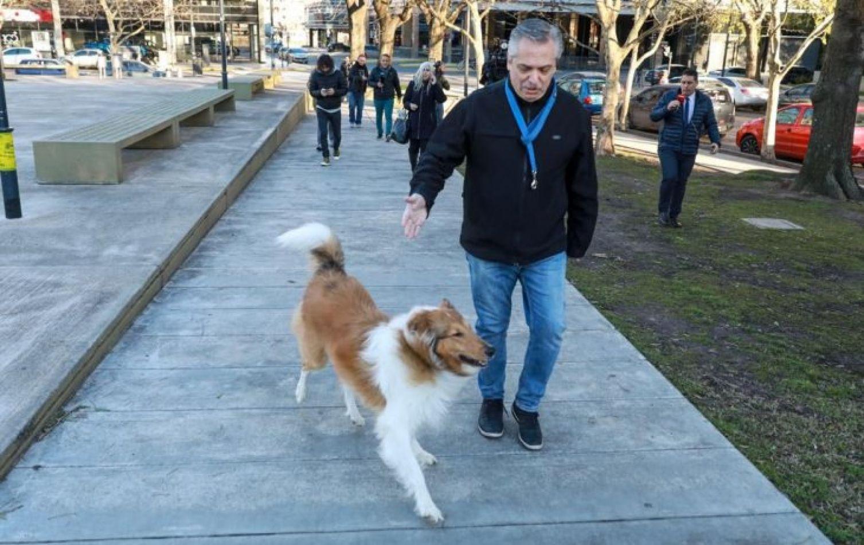 Antes de votar, Alberto Fernández tocó la guitarra y paseó a su perro