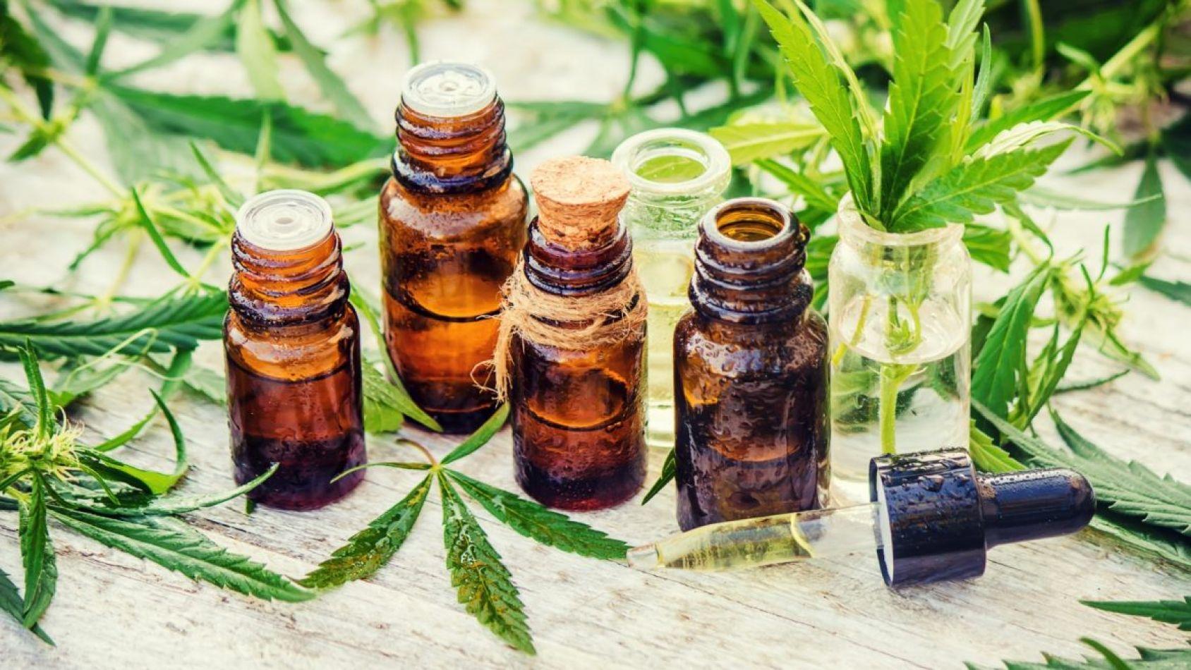"""Inician juicio por """"cultivo de marihuana"""" que era para uso medicinal"""