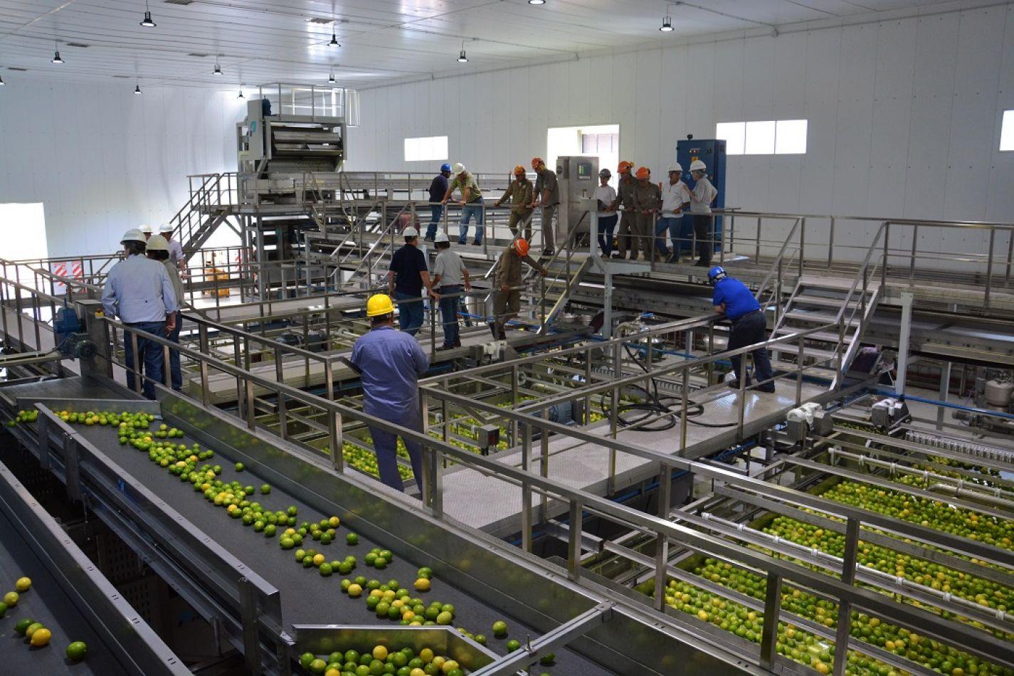 Hay un caso positivo de covid 19 en la planta de frutos y jugos del Ingenio Ledesma